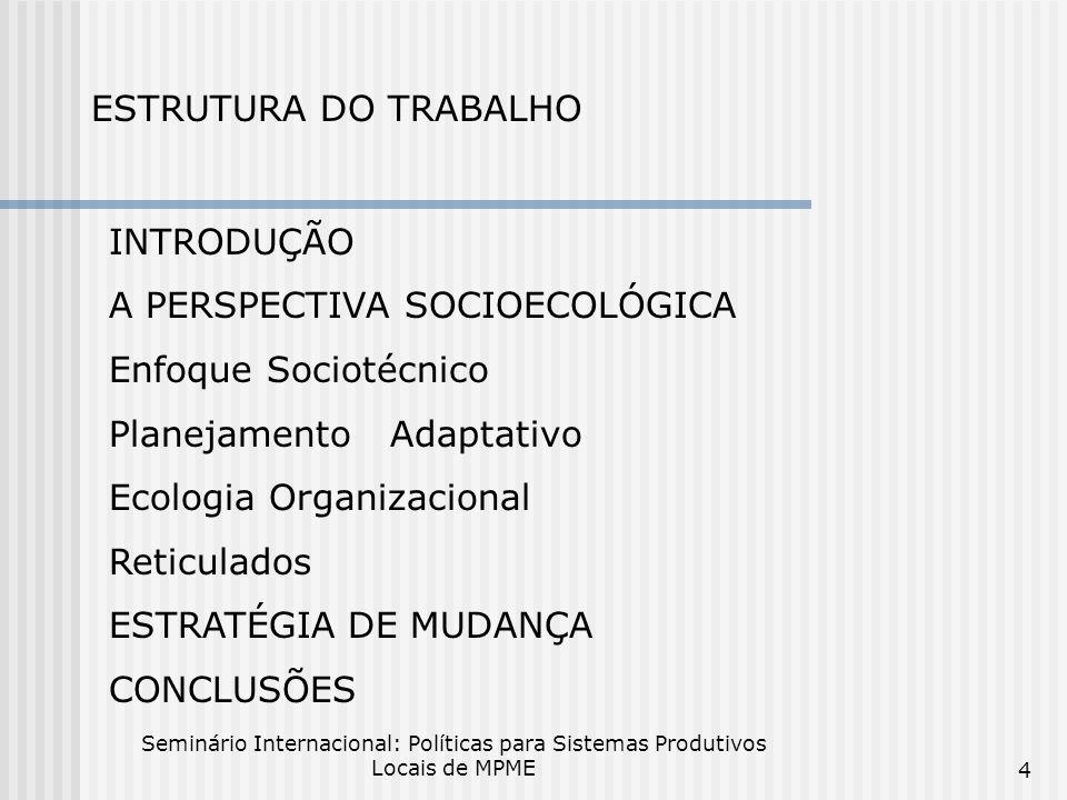A PERSPECTIVA SOCIOECOLÓGICA Enfoque Sociotécnico