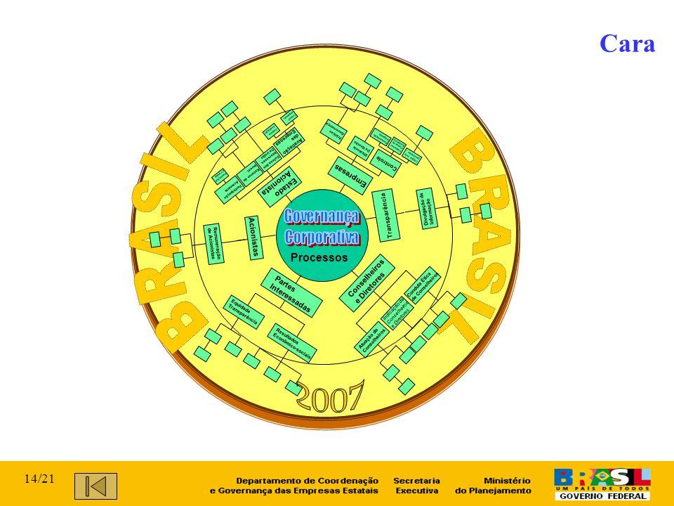 BRASIL BRASIL 2007 Cara Governança Corporativa 14/21 Processos