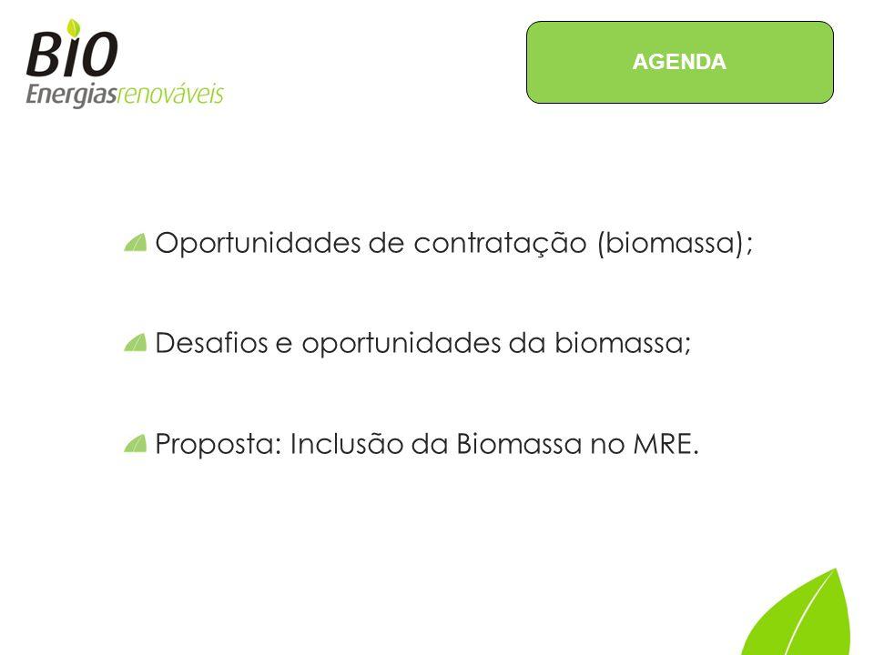 Oportunidades de contratação (biomassa);