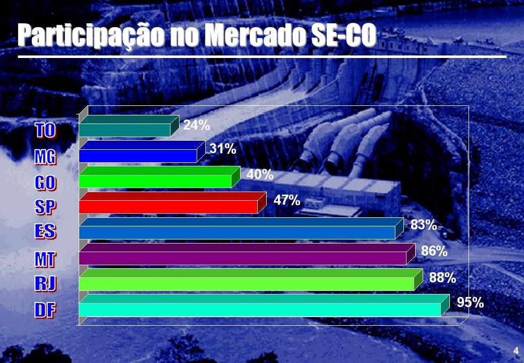 Participação no Mercado SE-CO