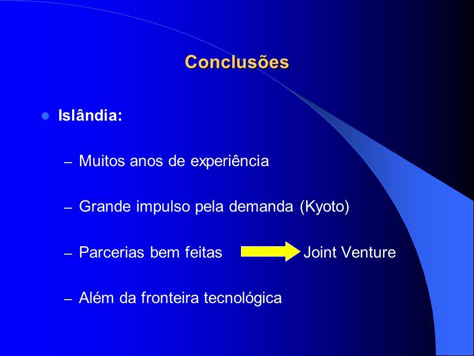 Conclusões Islândia: Muitos anos de experiência