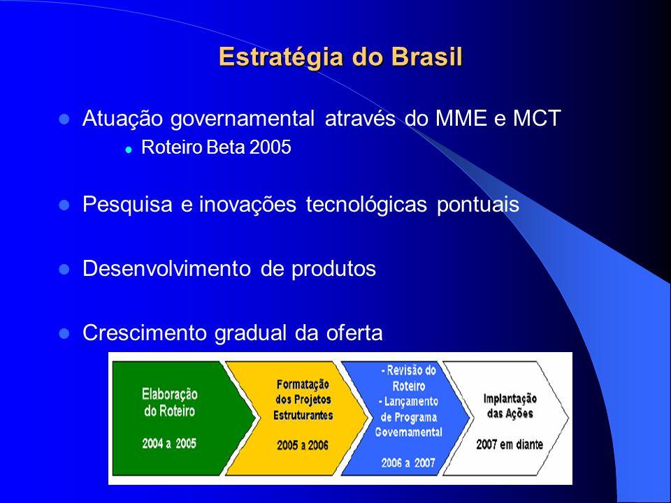 Estratégia do Brasil Atuação governamental através do MME e MCT