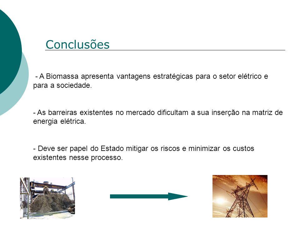 Conclusões- A Biomassa apresenta vantagens estratégicas para o setor elétrico e para a sociedade.