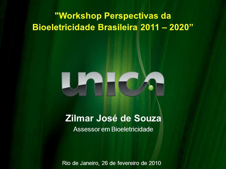 Workshop Perspectivas da Bioeletricidade Brasileira 2011 – 2020