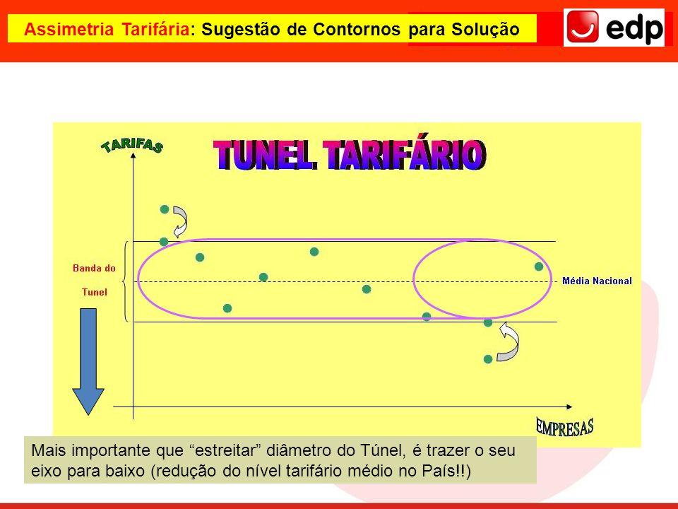 Assimetria Tarifária: Sugestão de Contornos para Solução