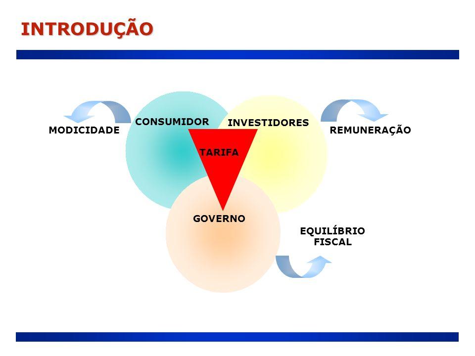 INTRODUÇÃO CONSUMIDOR INVESTIDORES GOVERNO REMUNERAÇÃO