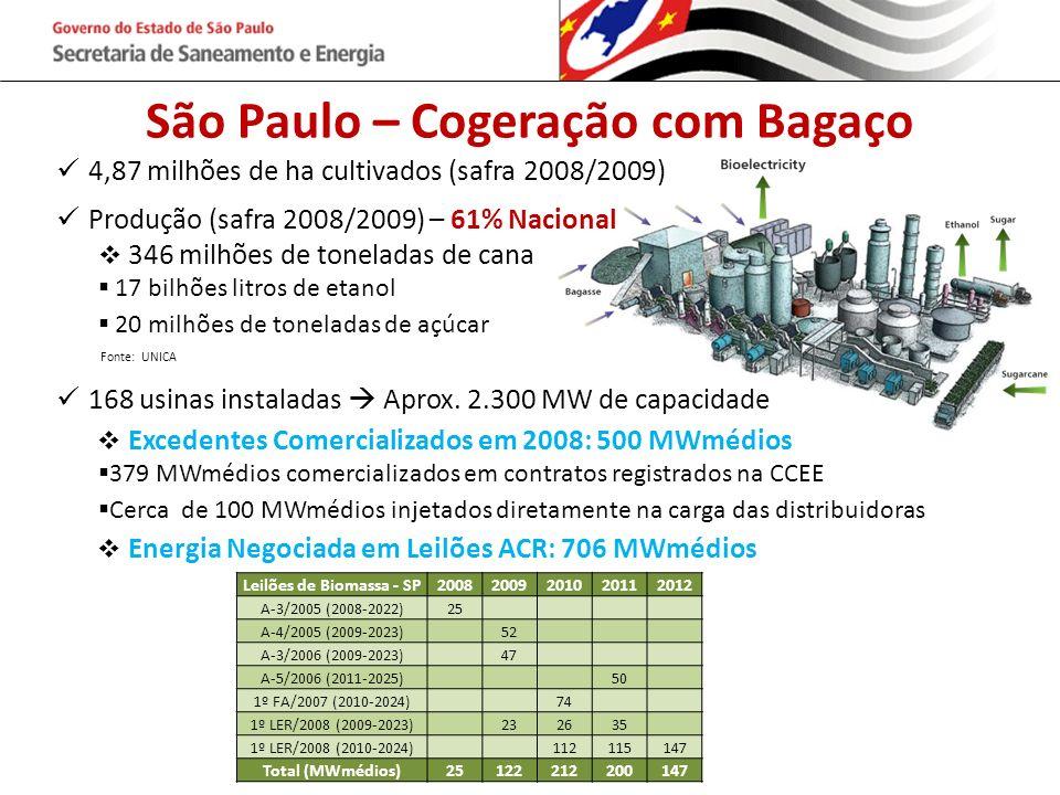 São Paulo – Cogeração com Bagaço Leilões de Biomassa - SP
