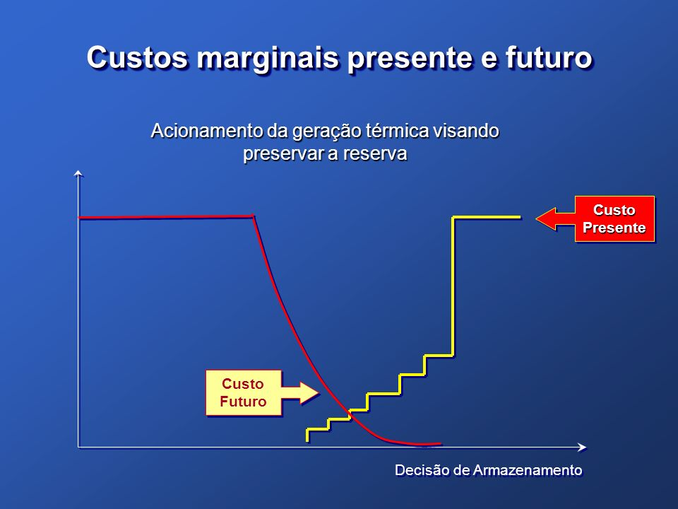 Custos marginais presente e futuro