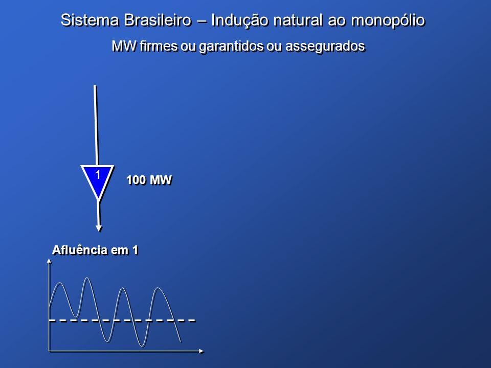 Sistema Brasileiro – Indução natural ao monopólio
