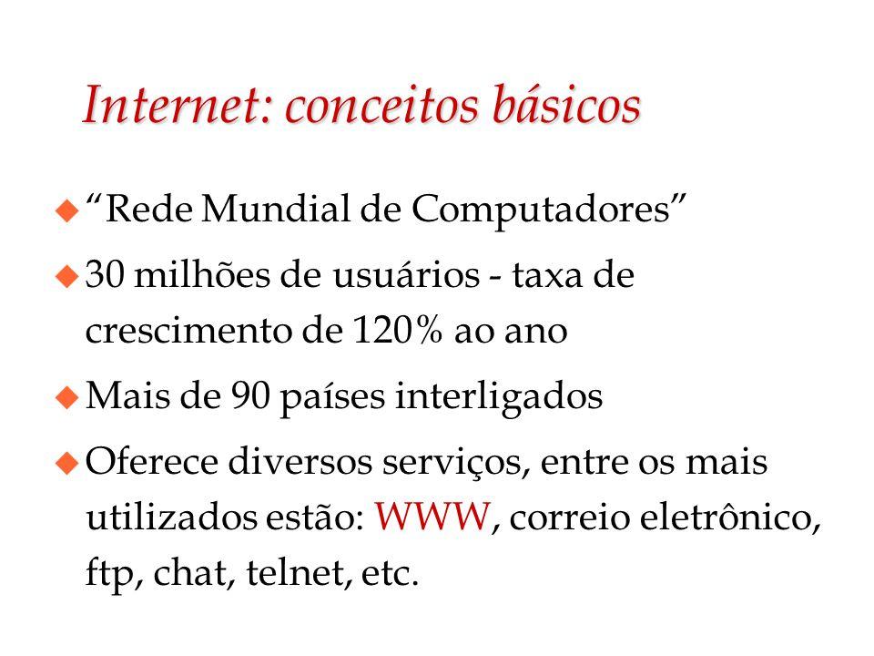 Internet: conceitos básicos