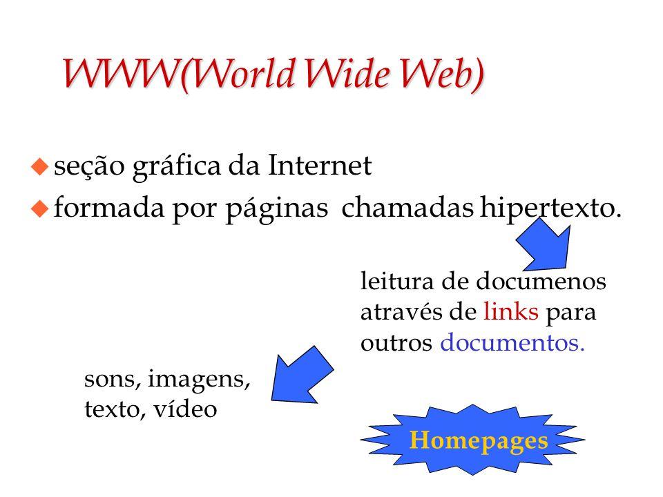 WWW(World Wide Web) seção gráfica da Internet