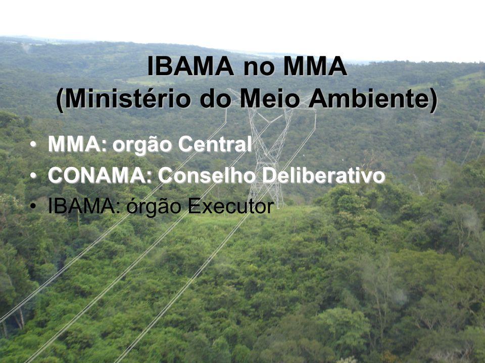 IBAMA no MMA (Ministério do Meio Ambiente)
