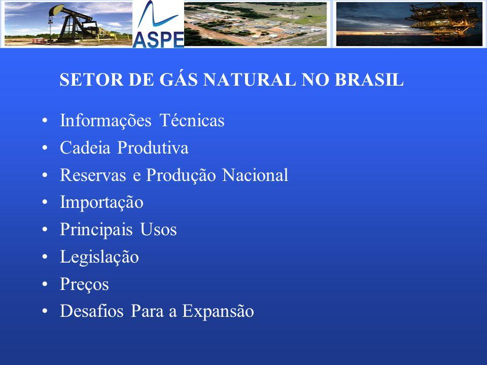 SETOR DE GÁS NATURAL NO BRASIL
