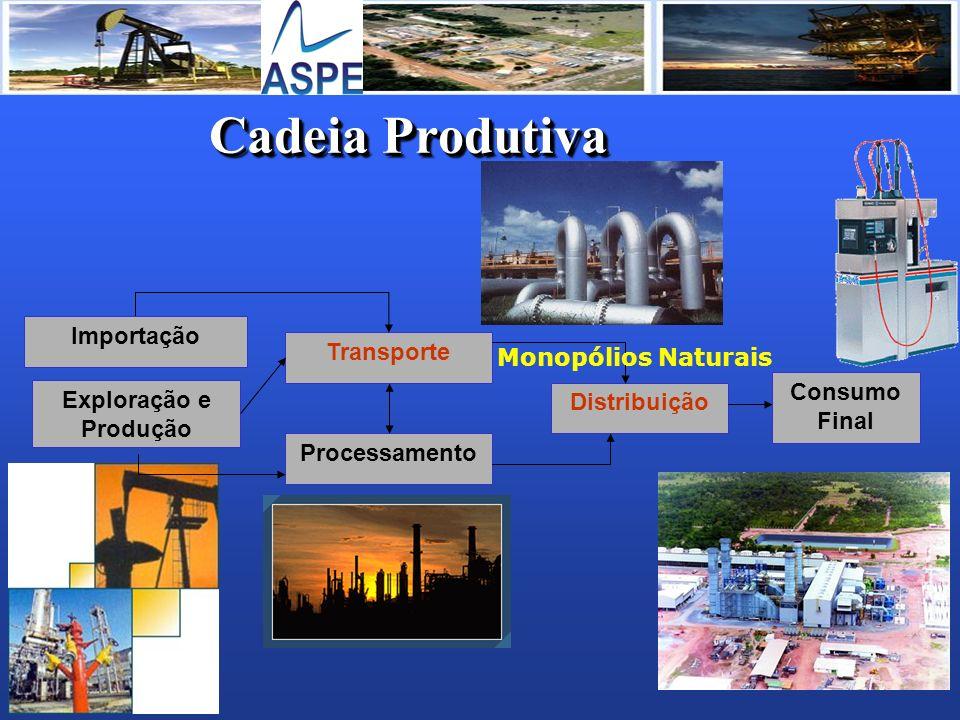 Cadeia Produtiva Importação Transporte Monopólios Naturais