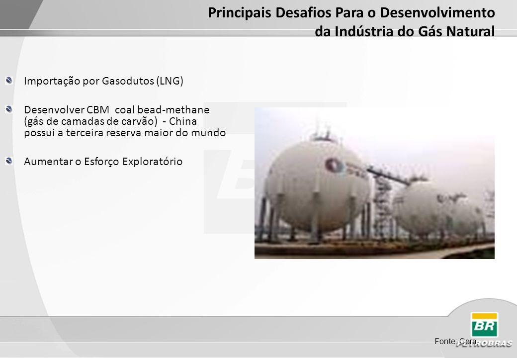 Principais Desafios Para o Desenvolvimento da Indústria do Gás Natural