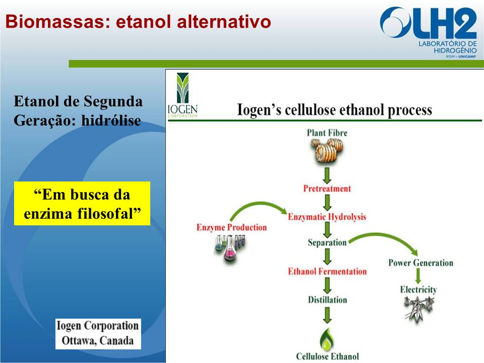 Biomassas: etanol alternativo
