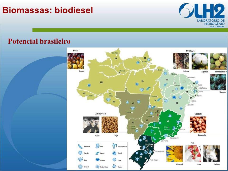 Biomassas: biodiesel Potencial brasileiro