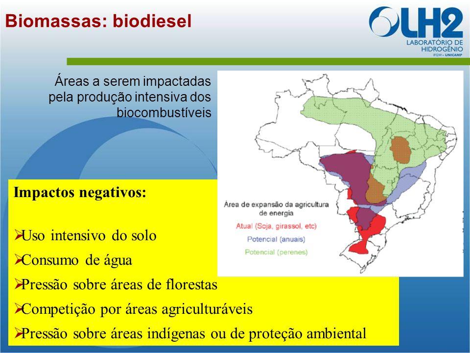 Biomassas: biodiesel Impactos negativos: Uso intensivo do solo
