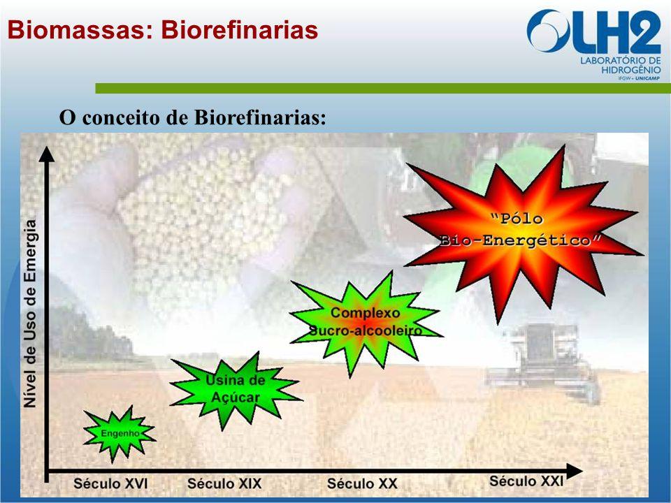 Biomassas: Biorefinarias