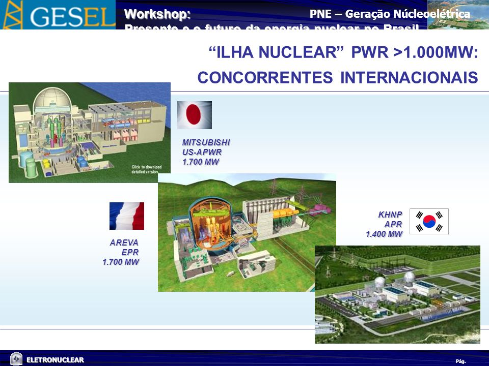 ILHA NUCLEAR PWR >1.000MW: CONCORRENTES INTERNACIONAIS