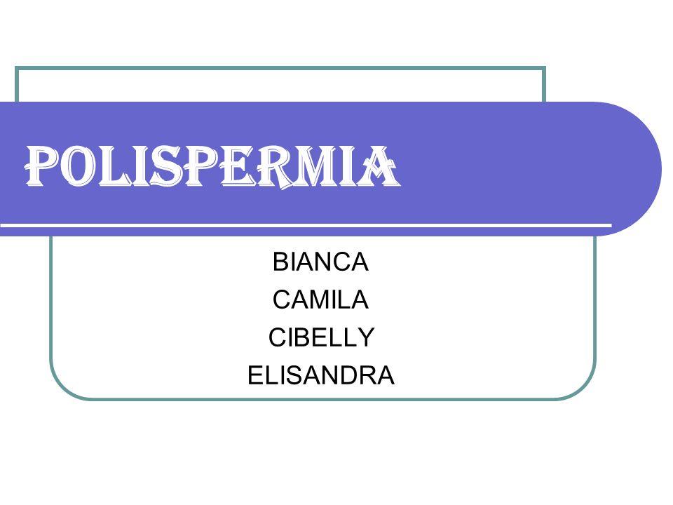 BIANCA CAMILA CIBELLY ELISANDRA