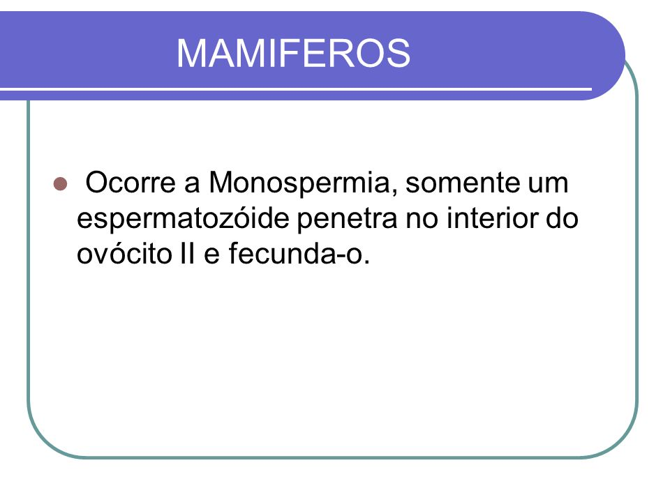 MAMIFEROS Ocorre a Monospermia, somente um espermatozóide penetra no interior do ovócito II e fecunda-o.