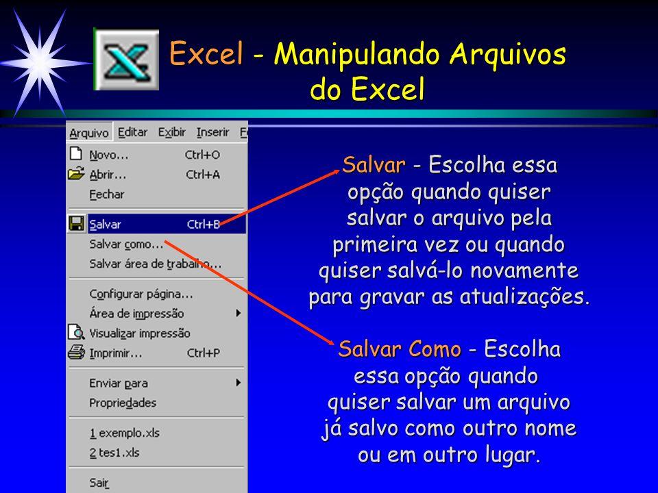 Excel - Manipulando Arquivos do Excel
