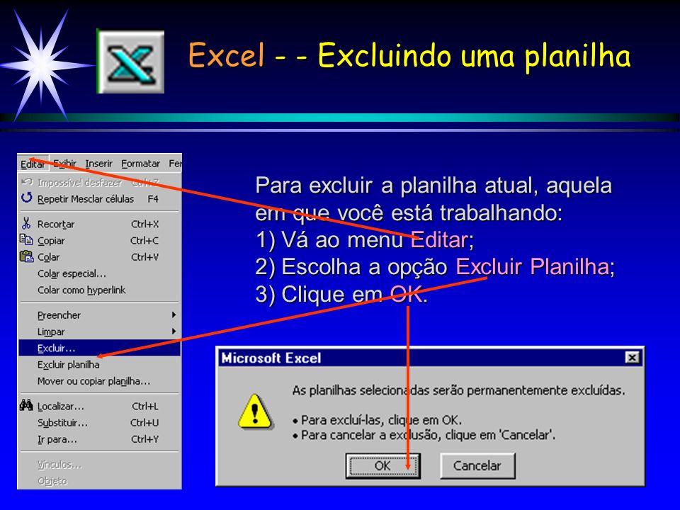 Excel - - Excluindo uma planilha