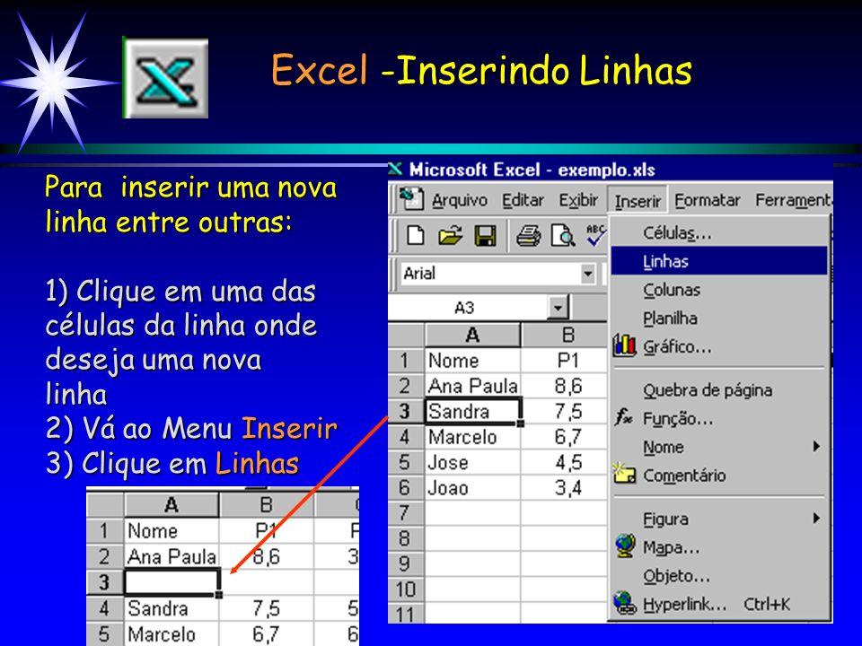 Excel -Inserindo Linhas