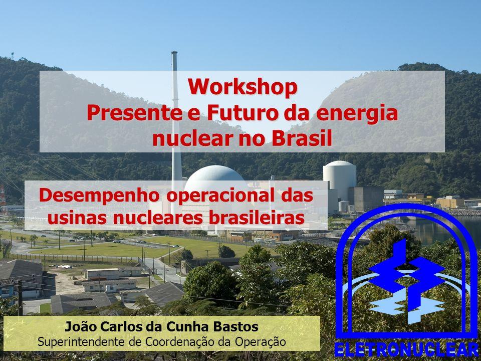 Workshop Presente e Futuro da energia nuclear no Brasil