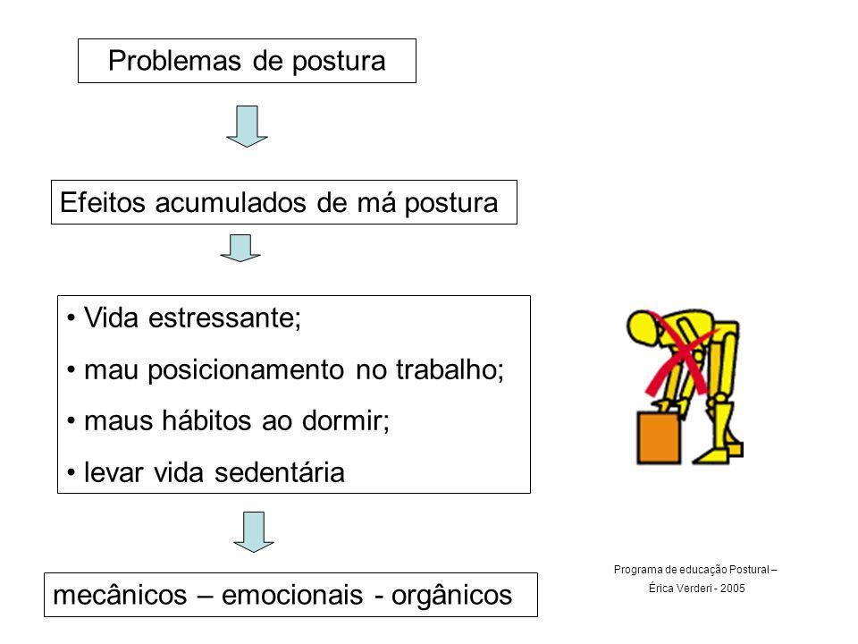 Programa de educação Postural –