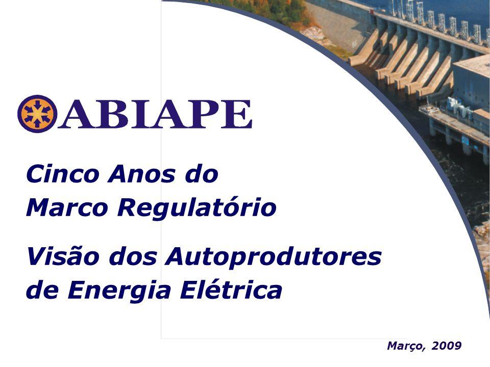 Visão dos Autoprodutores de Energia Elétrica