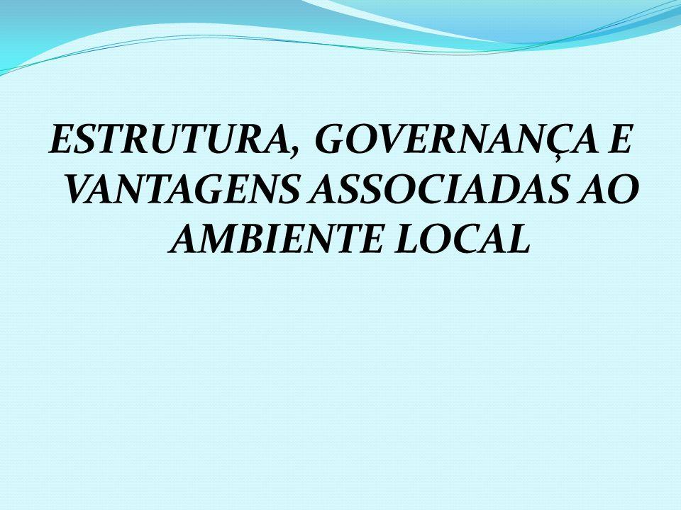 ESTRUTURA, GOVERNANÇA E VANTAGENS ASSOCIADAS AO AMBIENTE LOCAL
