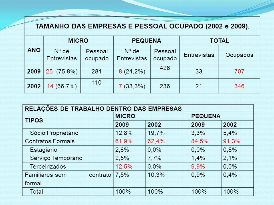 TAMANHO DAS EMPRESAS E PESSOAL OCUPADO (2002 e 2009).