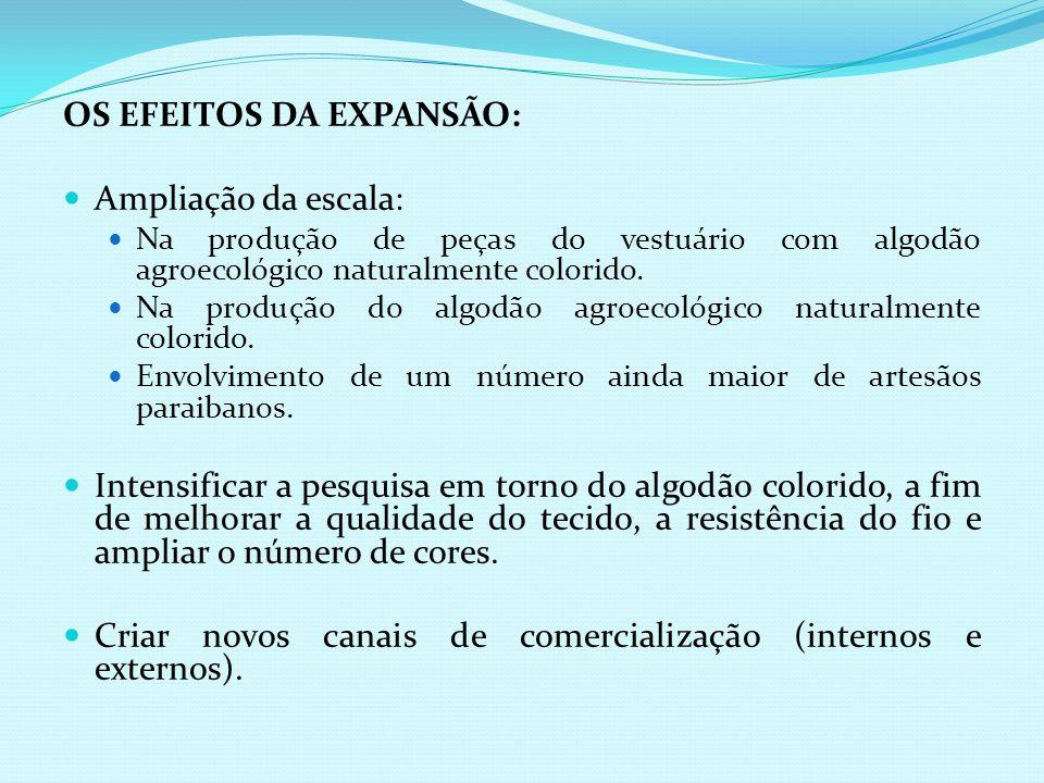 OS EFEITOS DA EXPANSÃO: Ampliação da escala: