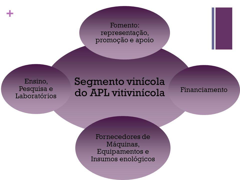 Segmento vinícola do APL vitivinícola