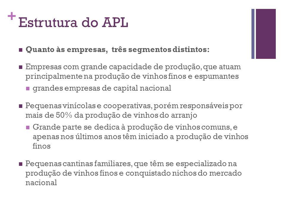 Estrutura do APL Quanto às empresas, três segmentos distintos: