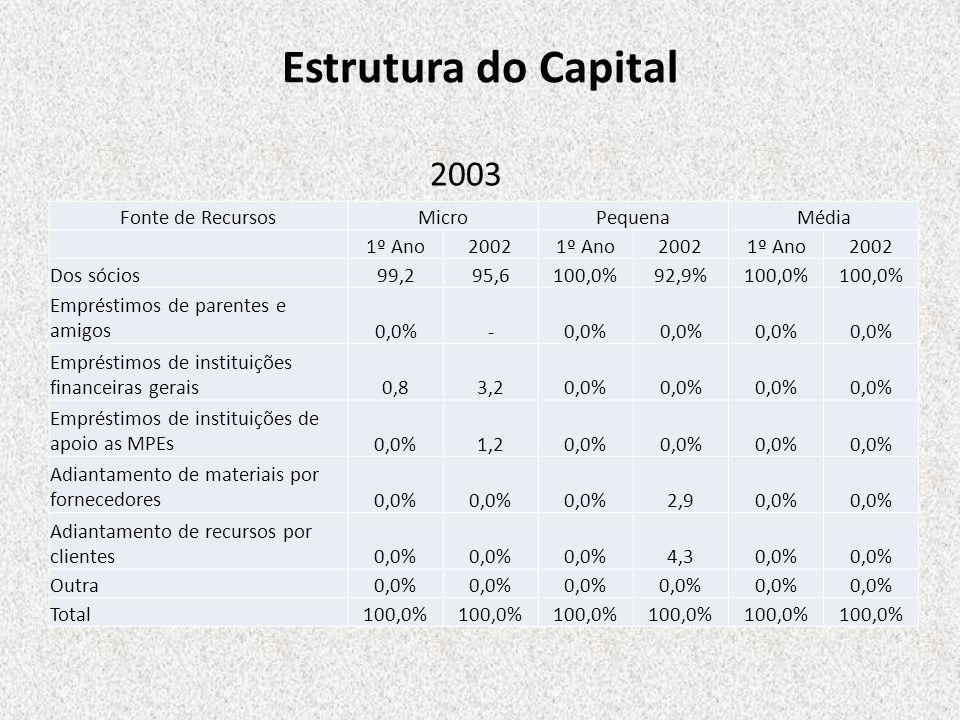 Estrutura do Capital 2003 Fonte de Recursos Micro Pequena Média 1º Ano