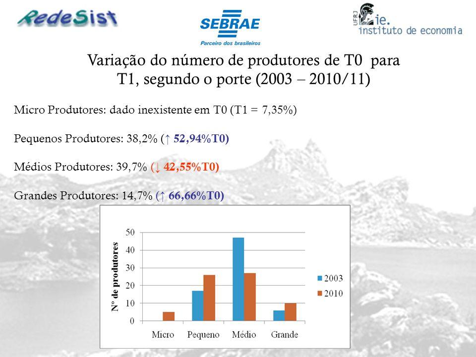 Variação do número de produtores de T0 para T1, segundo o porte (2003 – 2010/11)