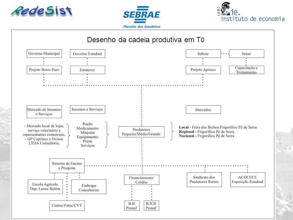 Desenho da cadeia produtiva em T0