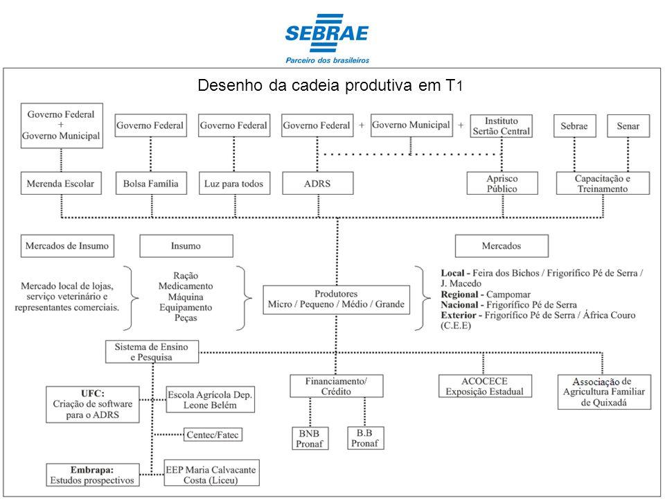 Desenho da cadeia produtiva em T1