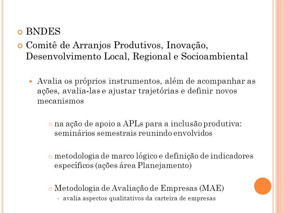 BNDES Comitê de Arranjos Produtivos, Inovação, Desenvolvimento Local, Regional e Socioambiental.