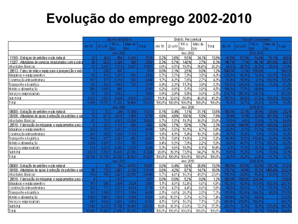 Evolução do emprego 2002-2010