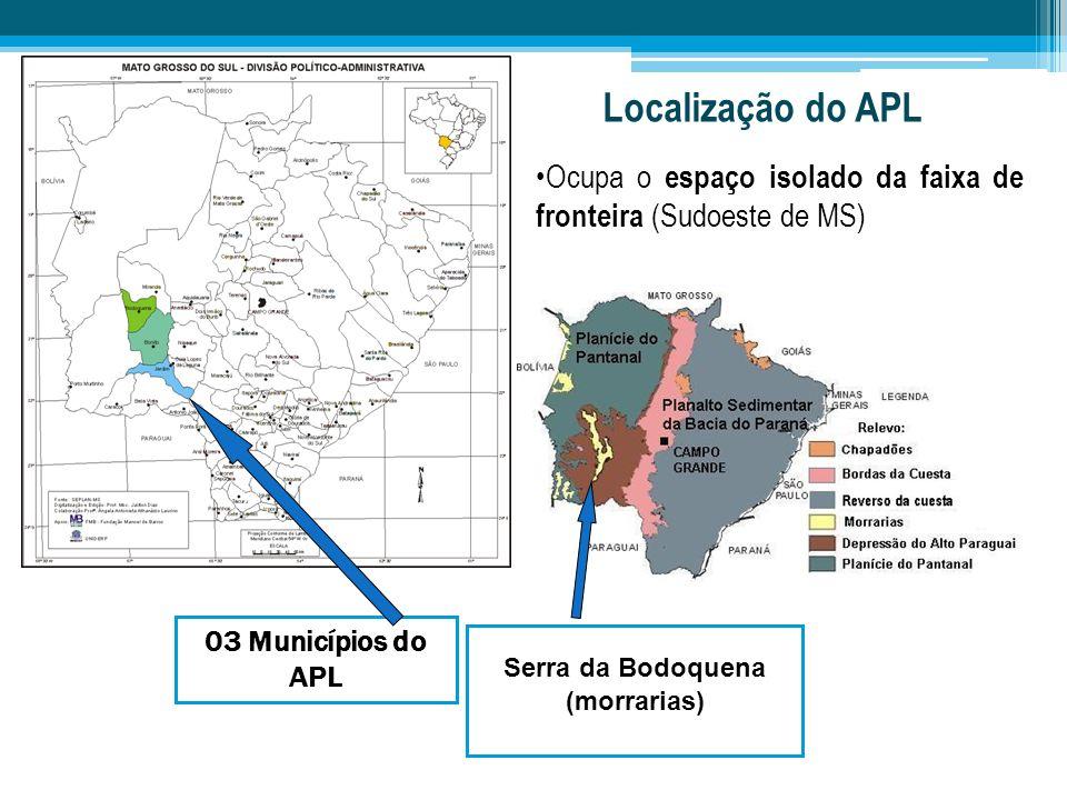 Localização do APL Ocupa o espaço isolado da faixa de fronteira (Sudoeste de MS) 03 Municípios do APL.