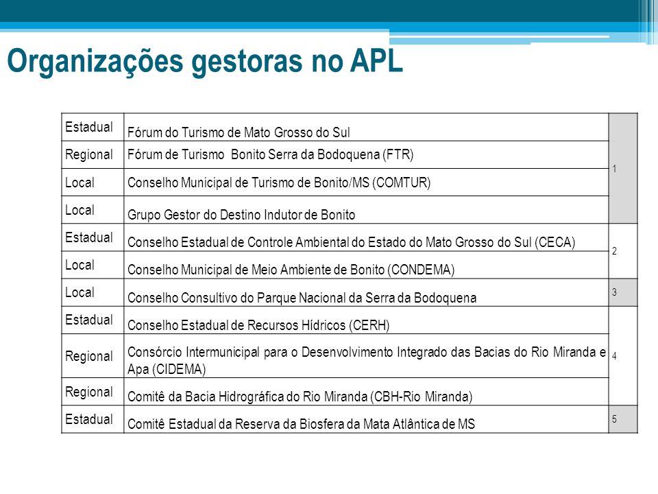 Organizações gestoras no APL