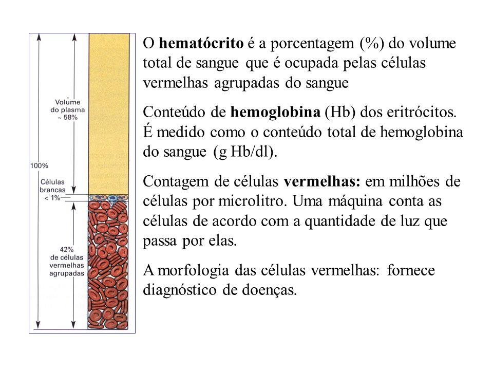 O hematócrito é a porcentagem (%) do volume total de sangue que é ocupada pelas células vermelhas agrupadas do sangue