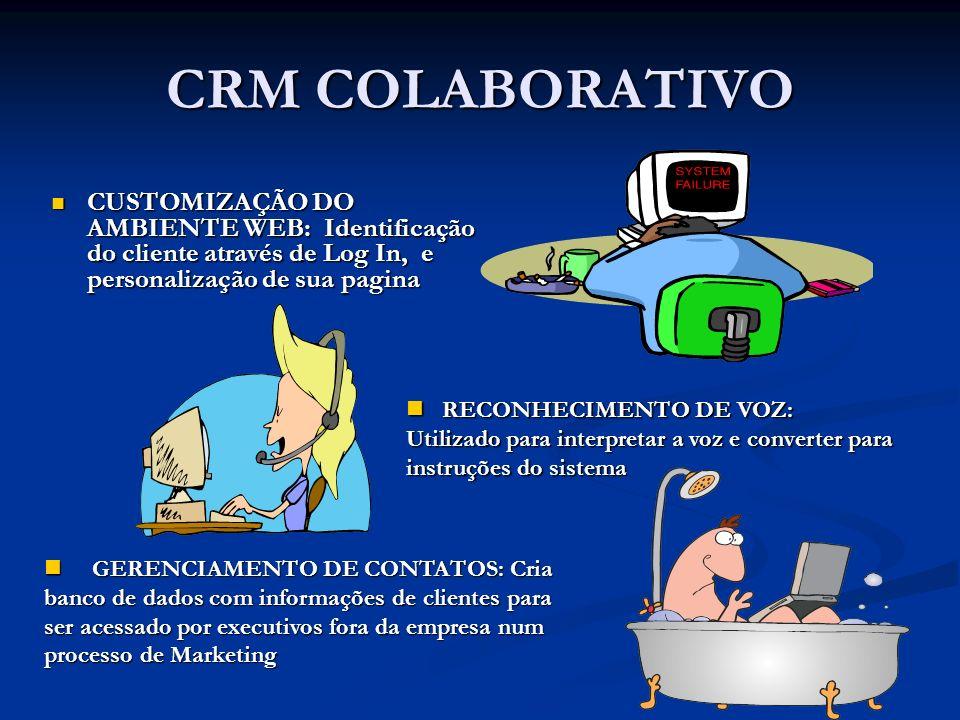 CRM COLABORATIVO CUSTOMIZAÇÃO DO AMBIENTE WEB: Identificação do cliente através de Log In, e personalização de sua pagina.