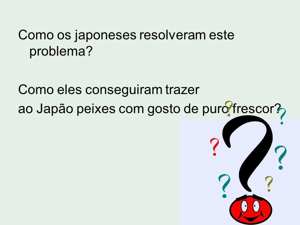Como os japoneses resolveram este problema