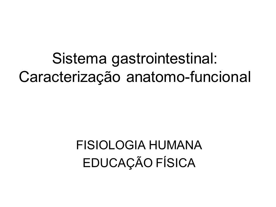 Sistema gastrointestinal: Caracterização anatomo-funcional