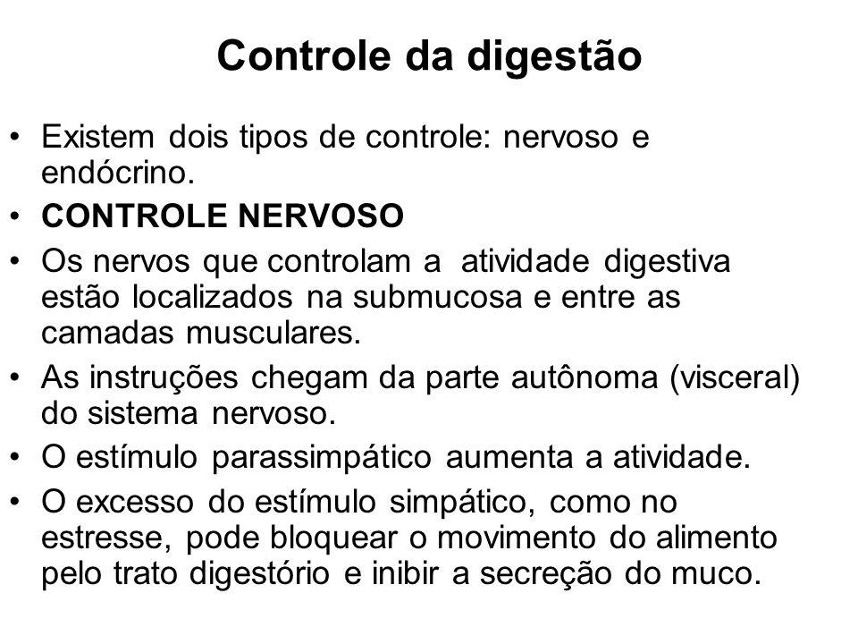 Controle da digestão Existem dois tipos de controle: nervoso e endócrino. CONTROLE NERVOSO.